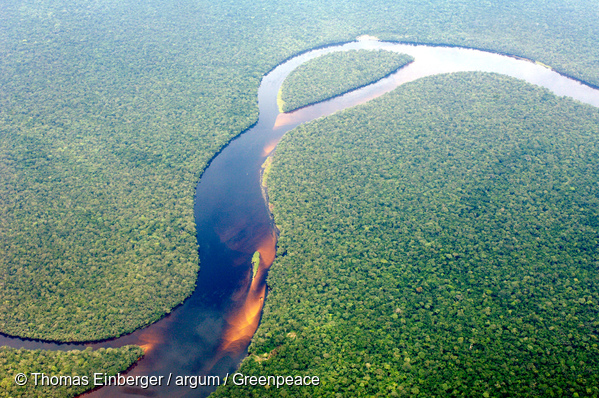 Aerial view of the Congolese rainforest. Taken on a flight from Kinshasa to Bumba.